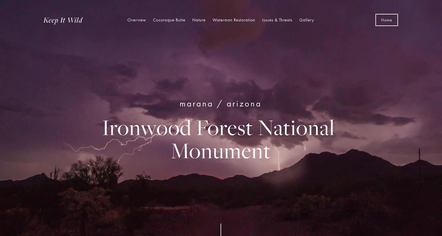 Ironwood Forest project by Lauren Trench